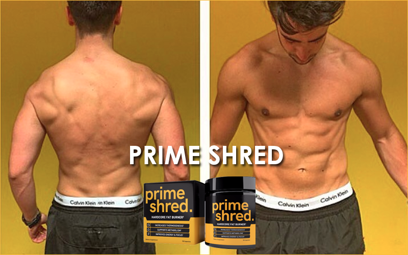 SHRED FAT, GET LEAN AND TRANSFORM YOUR BODY